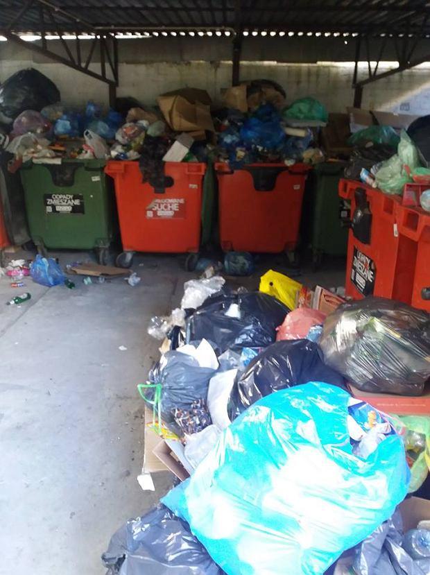 Przepełnione kontenery przy ul. Sieleckiej