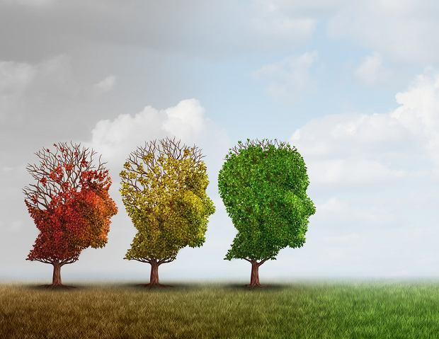 Schizofrenia paranoidalna - objawy, przyczyny, leczenie