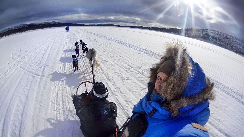 Fjällräven Polar (fot. Kate Zamana)