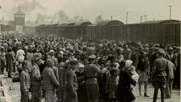''Selekcja'' węgierskich Żydów na rampie w obozie Auschwitz-Birkenau, maj/czerwiec 1944 r. (fot. Wikimedia.org / domena publiczna)