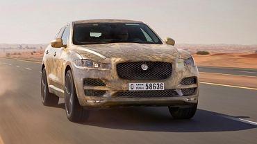 W Jaworze nie będzie fabryki Jaguara