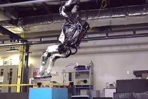 Umiesz zrobić salto w tył? Ten robot zrobi to bez problemu i nie złamie sobie przy tym kręgosłupa