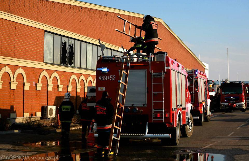 6eb86e6340844 Zdjęcie numer 17 w galerii - Pożar w CH Ptak. 20 zastępów straży pożarnej w