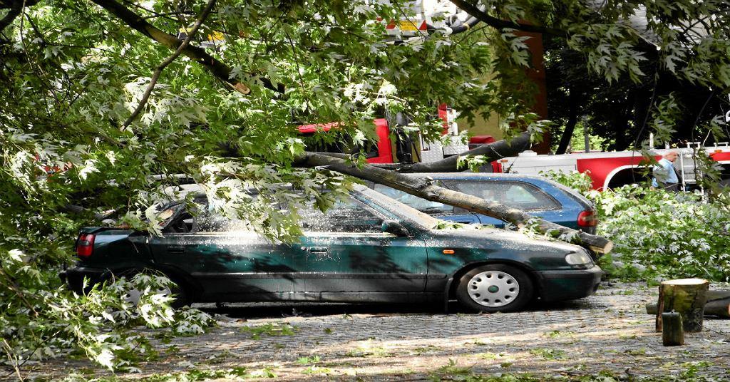 Akcja straży pożarnej po przewróceniu się drzewa na samochody na Mokotowie