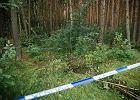 Trwają poszukiwania ciała Iwony Wieczorek. Policja przeczesuje nową lokalizację