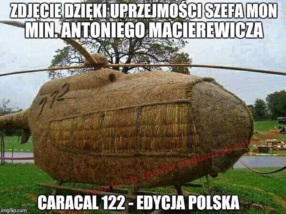 [Obrazek: z21667926IH,memy.jpg]