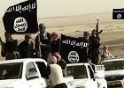 """Terrorystyczne państwo zniknie, terroryzm pozostanie. ISIS szykuje się na życie po """"kalifacie"""""""
