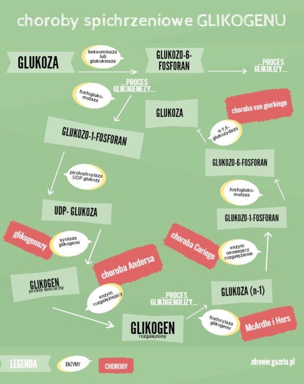 Zesp� Fanconiego-Bickela (glikogenoza typu XI, GSD XI)