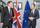 Donald Tusk i David Cameron