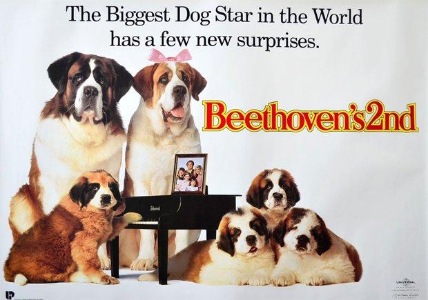Plakat do drugiej części filmu o psie Beethovenie