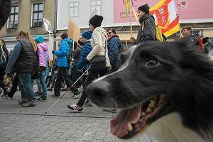 Marsz uczni�w z psami w centrum Poznania przeciw narkotykom w szko�ach [ZDJ�CIA]