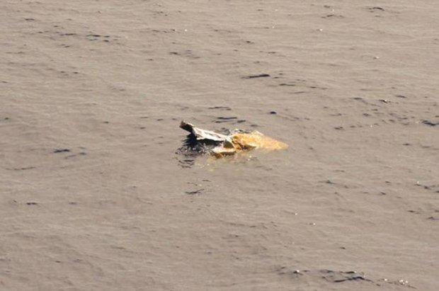 "Poszukiwania kontenerowca ""El Faro"". To najwi�ksza katastrofa statku pod bander� USA od 30 lat"
