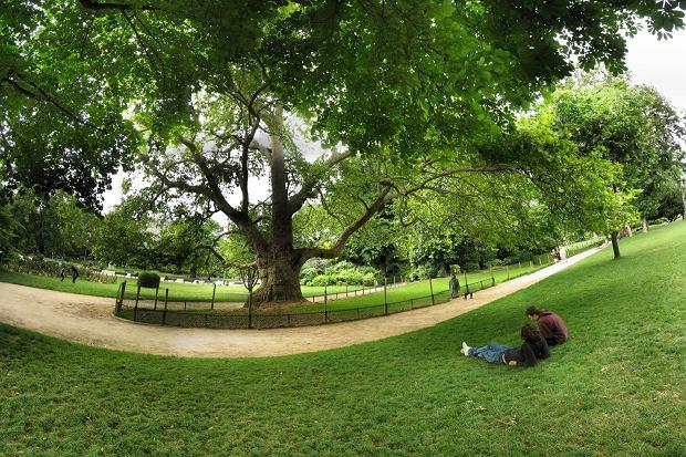 Park Monceau / flickr.com fot. Panoramas