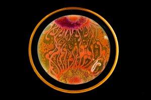 Bakterie jak dzie�o sztuki