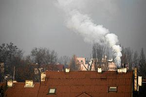 Coraz bliżej ustawy antysmogowej. Będzie można zakazać palenia węglem?