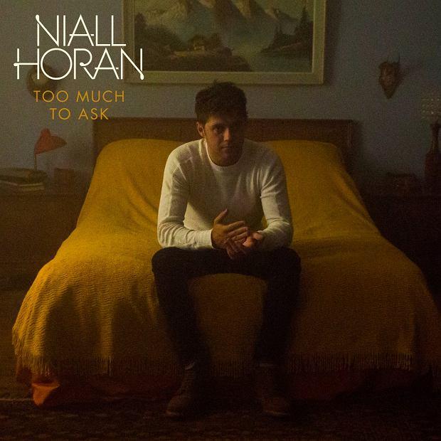 """Muzyk znany z zespołu One Direction podzielił się ze swoimi fanami klipem do kolejnego singla """"Too Much To Ask"""""""