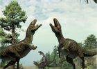 Dinozaury ta�czy�y! Przebiera�y nogami, spogl�da�y w g�r� i rycza�y - tak si� do siebie zaleca�y