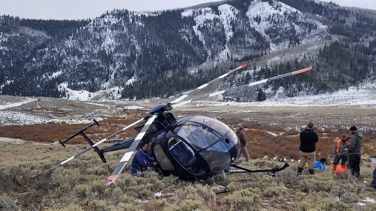 W stanie Utah łoś strącił śmigłowiec