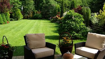 5 wskazówek, jak stworzyć wymarzony ogród