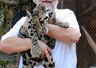 Jak wroc�awskie zoo ratuje zwierzaki zagro�one wygini�ciem