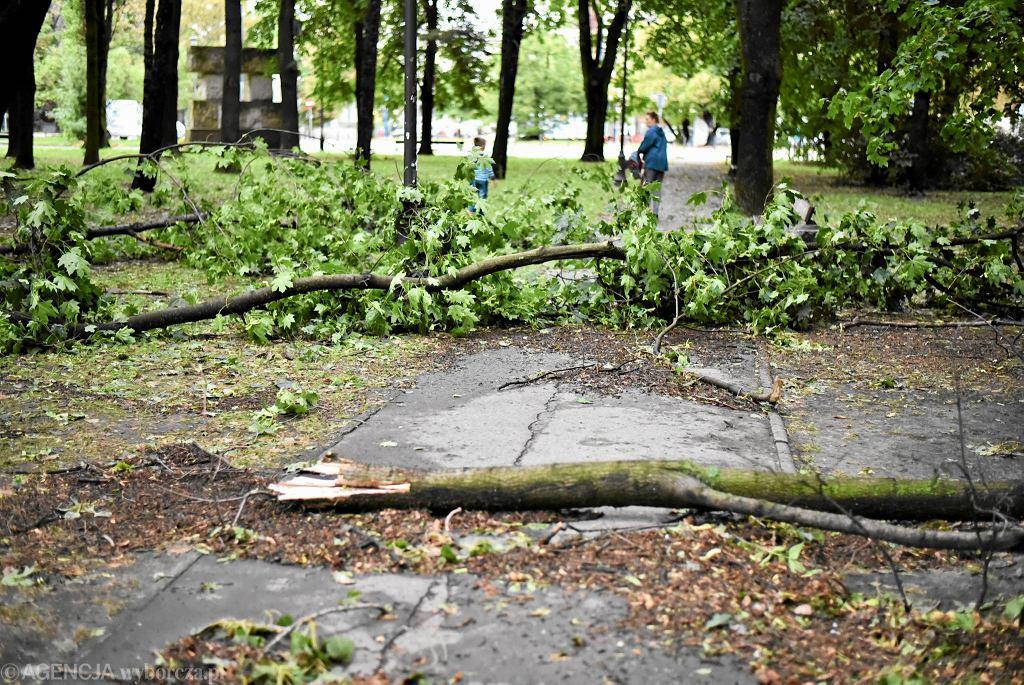 Szkody po nawałnicy w parku Rydza-Śmigłego