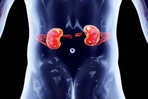 Kamica nerkowa, to jedna z najczęstszych chorób układu moczowego. Jak ją leczyć?