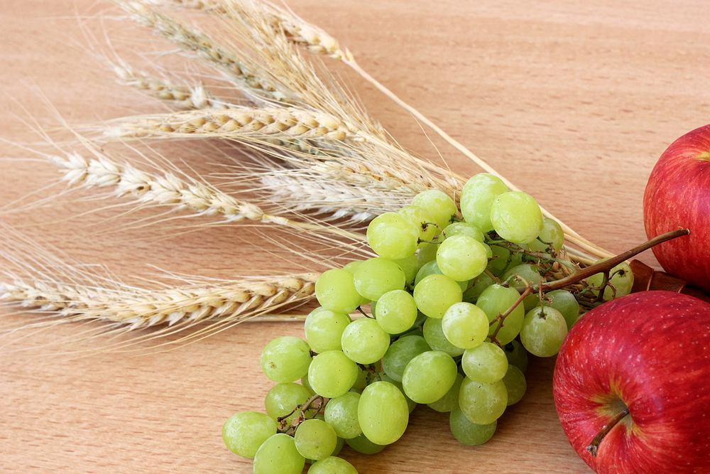owoce i zboża