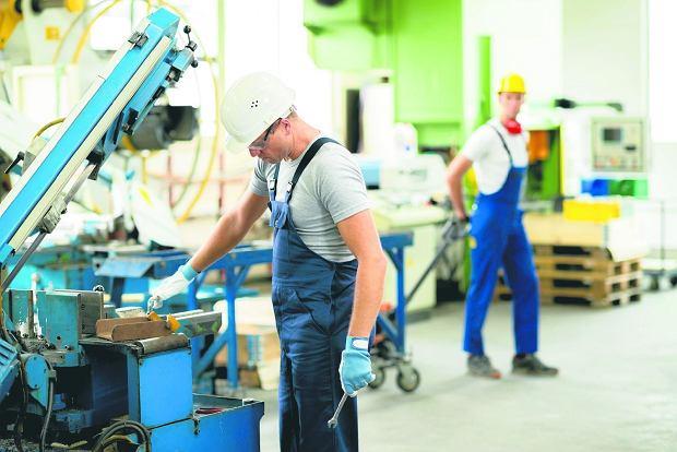 Nowa twarz współczesnego robotnika