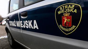 Radiowóz straży miejskiej [zdjęcie ilustracyjne]