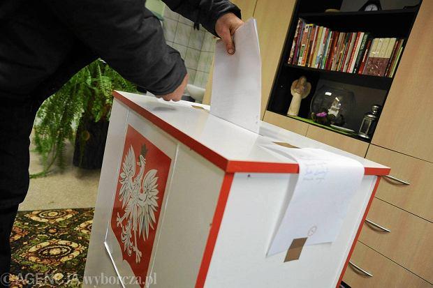 Frekwencja wyborcza w Opolu 36,4 proc. Ponad po�owa opolan zosta�a w domach