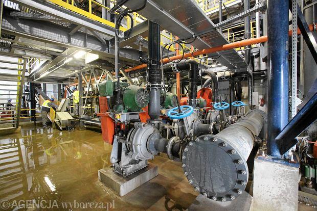MPIPS wyda 500 mln zł na ochronę miejsc pracy