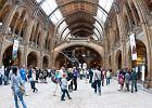 Muzeum Historii Naturalnej, Londyn - 4,647,613 odwiedzaj�cych rocznie. Muzeum jest w du�ej cz�ci interaktywne i multimedialne. Mo�na tu prze�y� symulowane trz�sienie ziemi, pozna� mechanizmy wybuchu wulkanu, zobaczy� szkielet diplodoka oraz poruszaj�ce si�, wydaj�ce odg�osy dinozaury. Muzeum mie�ci si� ponadto w pi�knym wiktoria�skim gmachu i  gromadzi ponad 70 milion�w eksponat�w! Wst�p jest wolny.