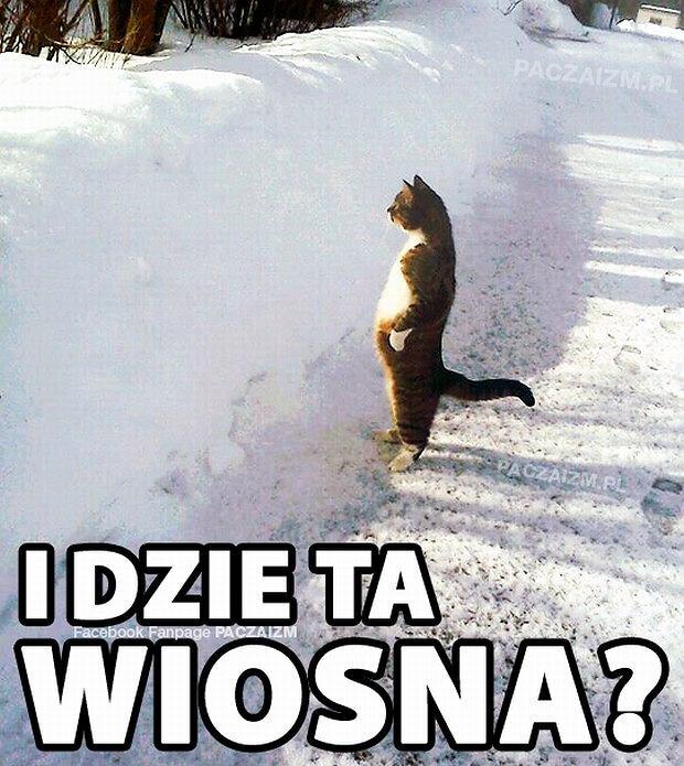 Za oknami śnieg. internauci się denerwują i tworzą memy [zdjęcia