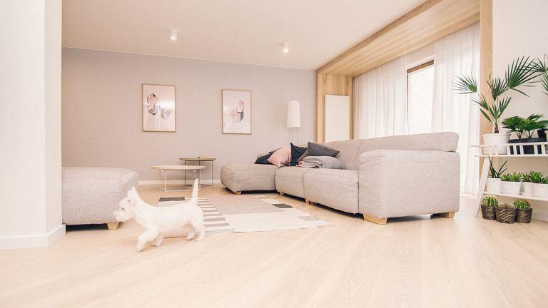 Przytulny salon jest centrum życia rodzinnego.