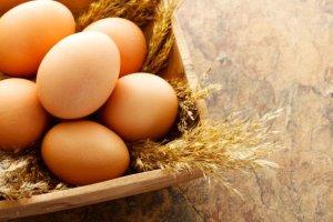 Oznaczenia na jajkach - co oznaczaj� i jak wybra� te najlepsze?