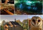 8 wyj�tkowych miejsc w Polsce na jednodniowy wypad