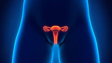 Niedrożne jajowody to jedna z częstszych przyczyn problemów z zajściem w ciążę