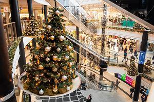 Szaleństwo przedświątecznych zakupów: Polacy w stresie największym w Europie. Nie wiemy, co wybrać na prezent, i czy trafimy w gust
