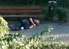 Kalisz. Policja i pogotowie pokłóciły się nad nieprzytomnym pacjentem i... zostawiły go na chodniku