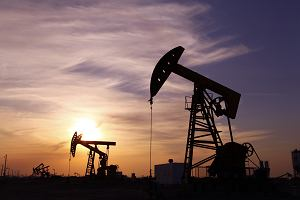 Ropa jest najdroższa od trzech lat. Kierowcy w Polsce powinni teraz trzymać kciuki za złotego