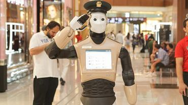 Policjant-robot