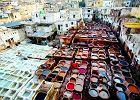 Hity Maroka