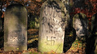 Zdewastowany cmentarz żydowski z Mińsku Mazowieckim