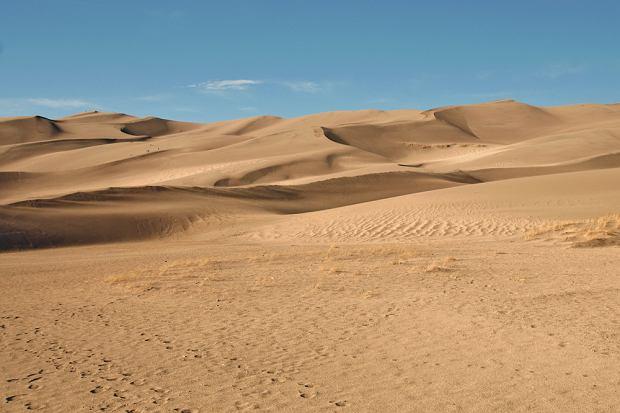 z10625416Q,pustynia.jpg