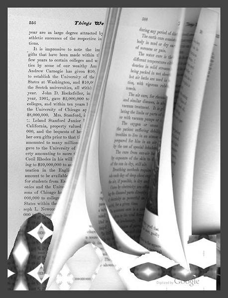Zdjęcie numer 5 w galerii - Google przenosi książki do Internetu - artysta widzi w tym dzieło sztuki