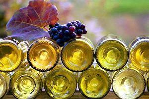 Wino z w�asnej winnicy