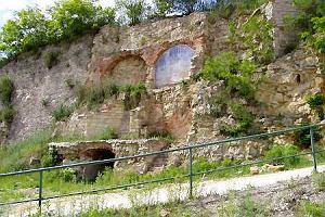 Kamieniołom w Rüdersdorfie: Gady, nory i twarde dna