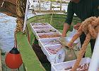 Adriatyk - standardowe wyposażenia jachtu