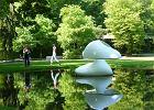Podróże z naturą i sztuką - Holandia. Muflony i van Gogh
