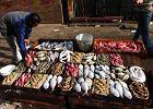 Podróże kulinarne. Egipt
